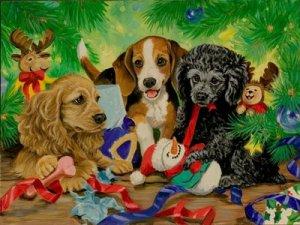 Como embrulhar presentes com cães na casa