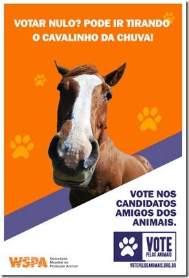 santinhos_cavalo