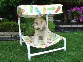 Dog_beds_005.jpg